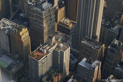 New York apartment building with trees at the roof top as viewed from from the Empire State Building.jpg