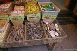 Sea Cucumber displayed by a shop in China town Manhattan.jpg