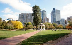 Boston Common Pictures