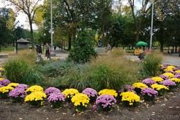 Pink and yellow flowers in circular garden of Boston Common.jpg