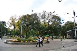 Circular garden in front of visitor center of Boston Common.jpg