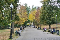 Fall foliage at Boston Common Park.jpg