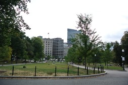 Boston Common park area next to Massachusetts State House.jpg