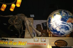 Lobby of Ripley's Believe It or Not Odditorium in New York.jpg